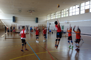 Qualification Championnat de France cadets UNSS Volley Eucalyptus Avril 2016 B
